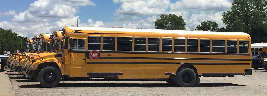 Blue Bird School Bus For Sale